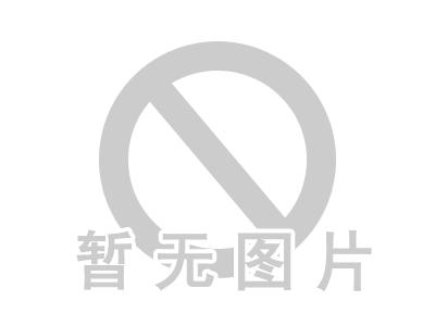 上海东盛物流有限公司